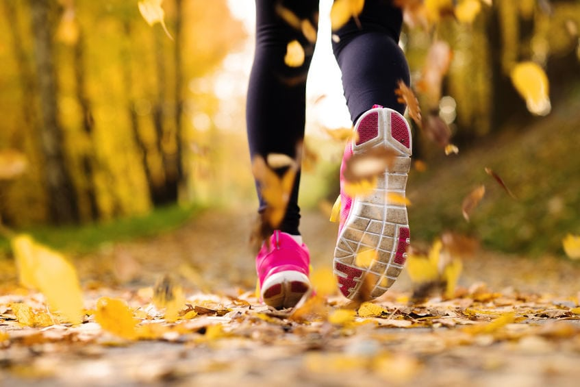The Health Benefits of Physical Activity, Exercise, and Fitness
