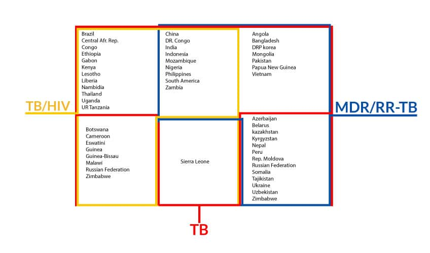 new_global_lists_of_high_burden_countries_on_TB