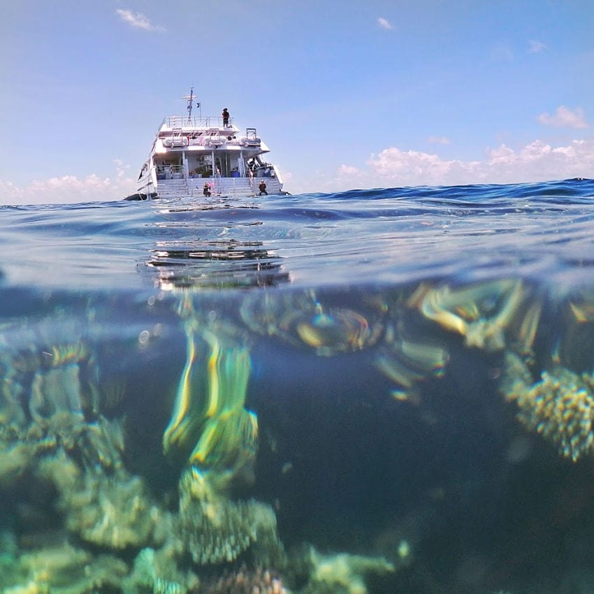 Reef Quest connects to the Ocean Quest Liveaboard Ship from Cairns