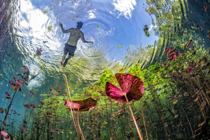Actividades qué hacer en Puerto Morelos, México: La ruta de los cenotes