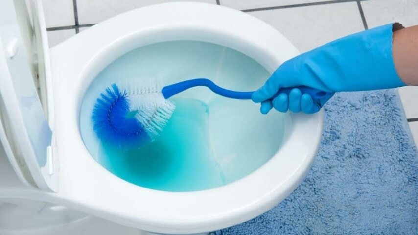 10 Amazing Toilet Cleaning Hacks for Your Bathroom