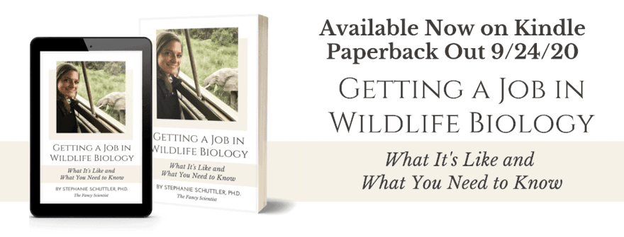 7 Beginner's Tips for a Wildlife Biology Career
