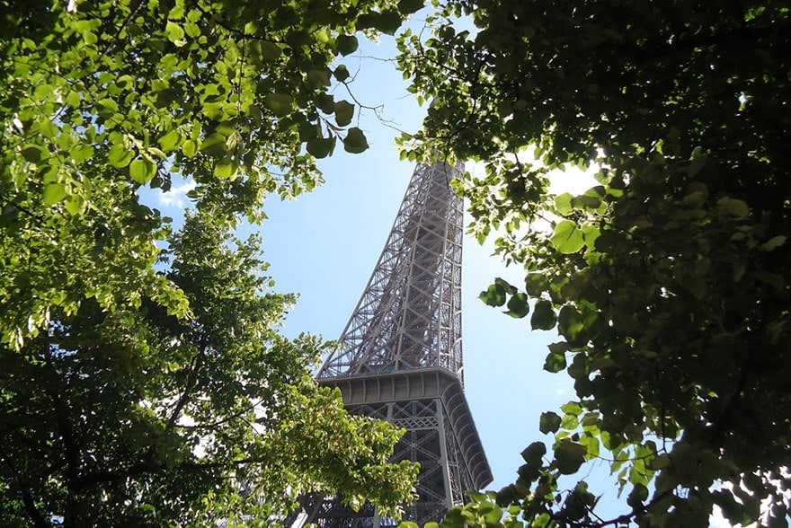 Forêts dans Paris