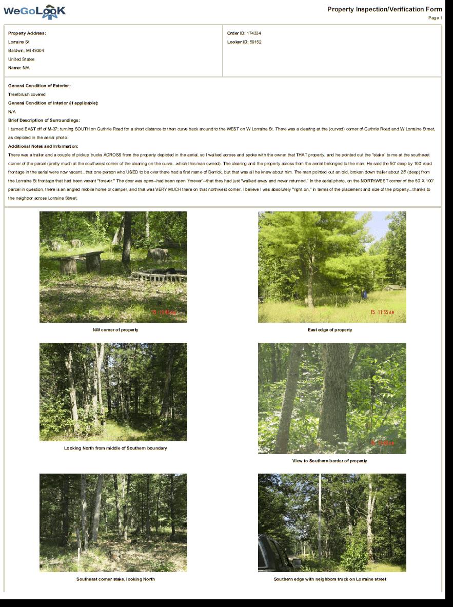WeGoLook Report Page 1