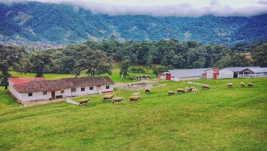 Hacienda Mil Amores