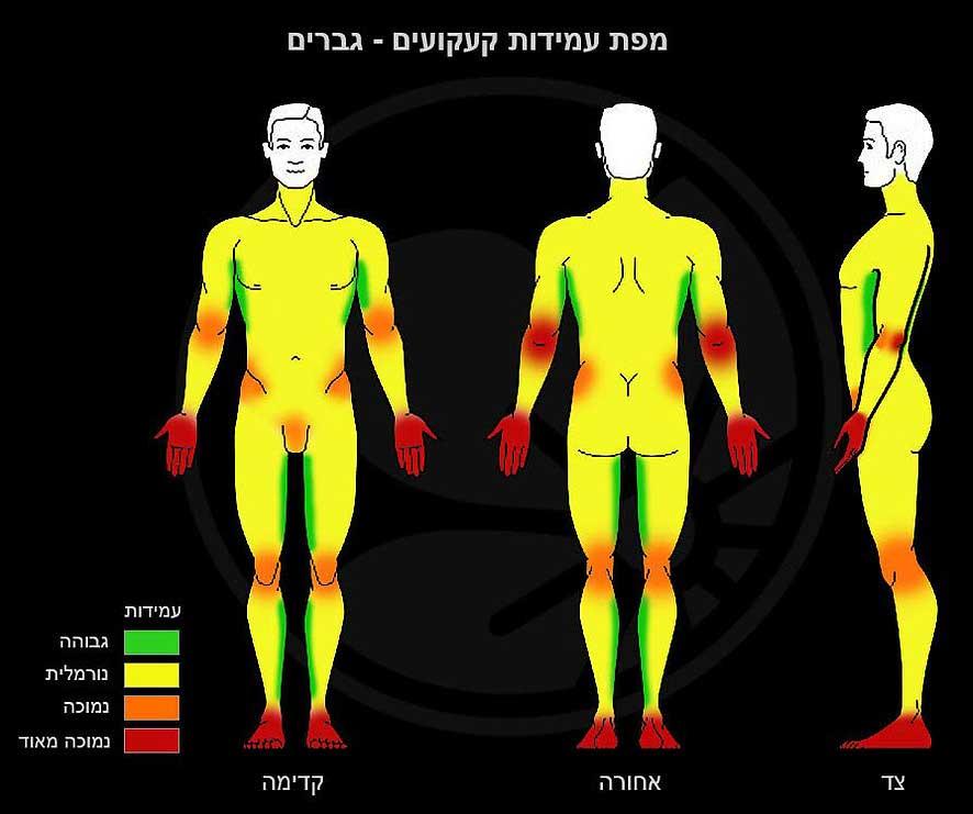 men tattoo pain tolerance chart