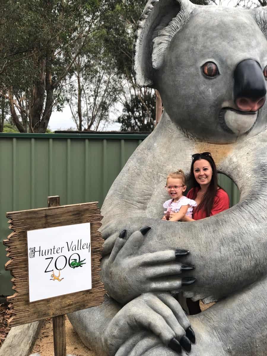 Hunter Valley Zoo Koala