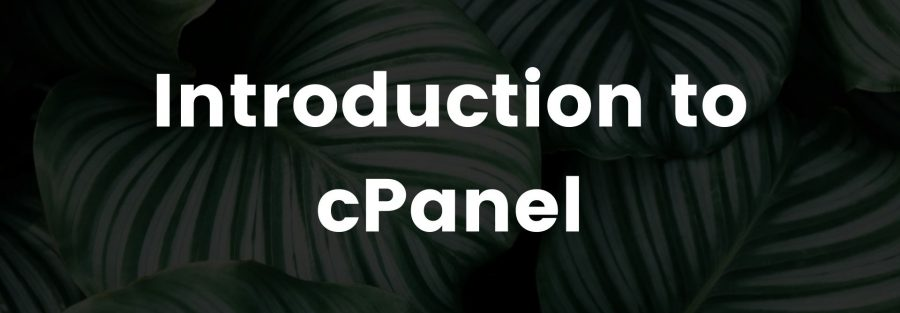 Introduction to cPanel