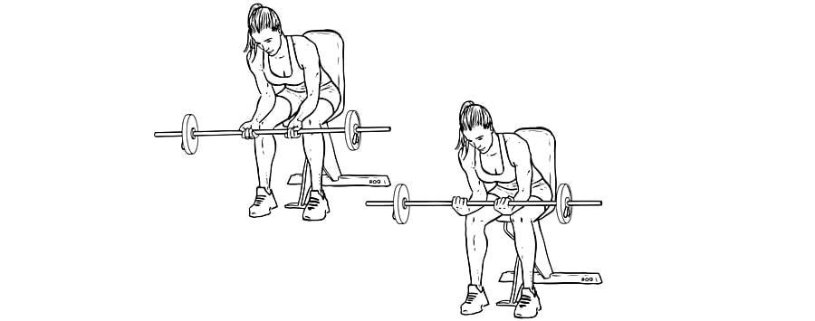 Exercícios para antebraços Rosca de Punho