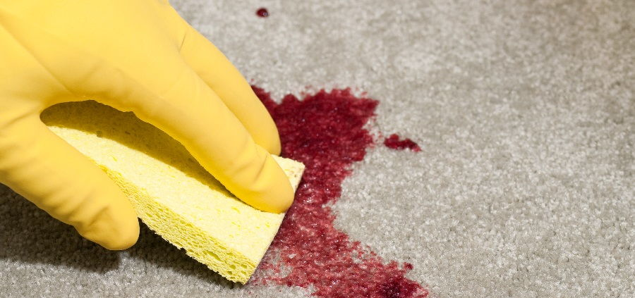 Как вывести пятно крови с дивана, ковра, одежды