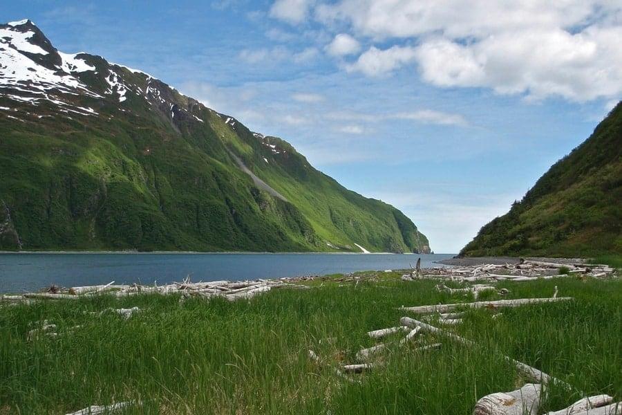 Kenai Fjords National Park in the summer