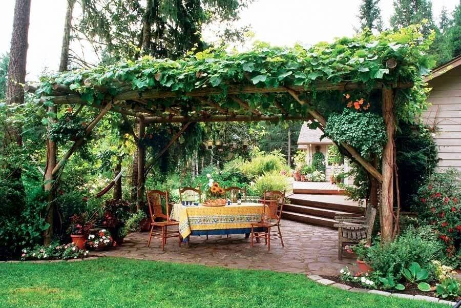 SUN SHADE FOR PATIO IDEAS WITH VINES