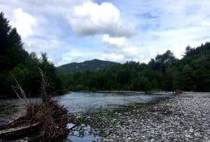 Vancouver fly fishing Cheakamus River