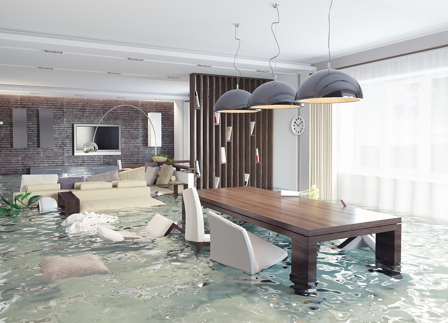 home water damage restoration in Tampa