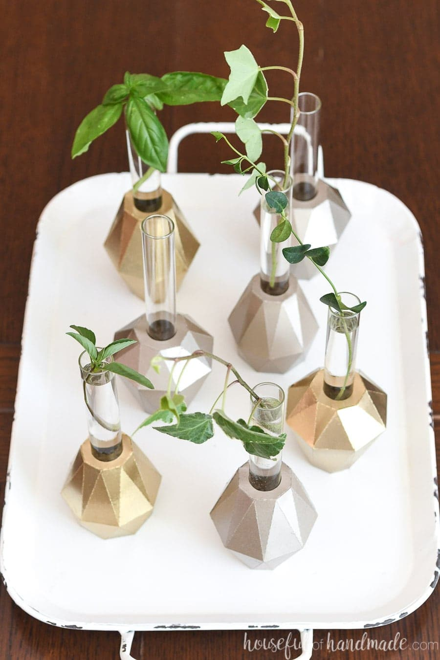 Looking down on a white tray plant propagation station: 7 jeweled test tube vases holding plant clippings.