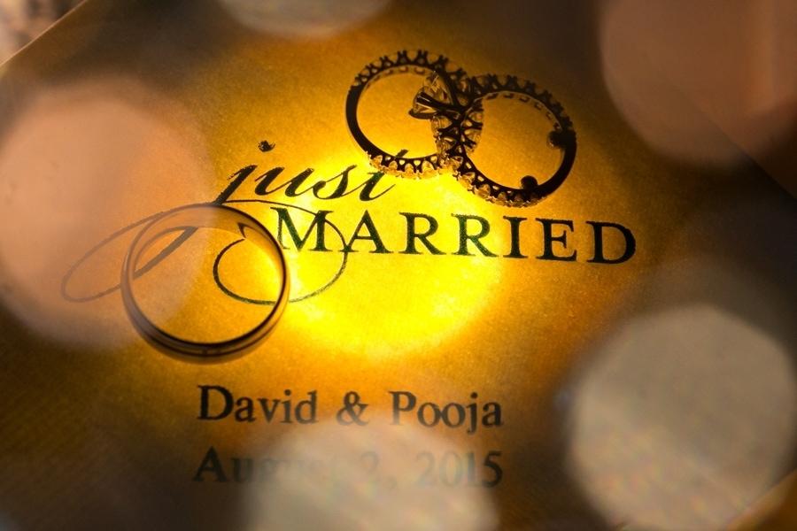 Pooja & David -  - AB6A7879