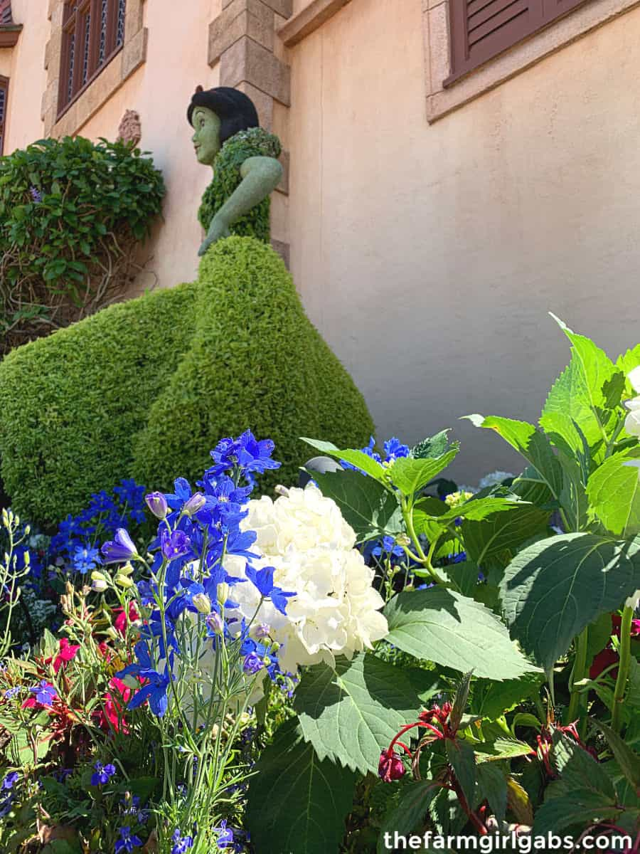Spring is in the air at Walt Disney World. The Epcot Flower And Garden Festival is in full bloom. Check out this Ultimate Guide To Epcot Flower And Garden Festival before you go.