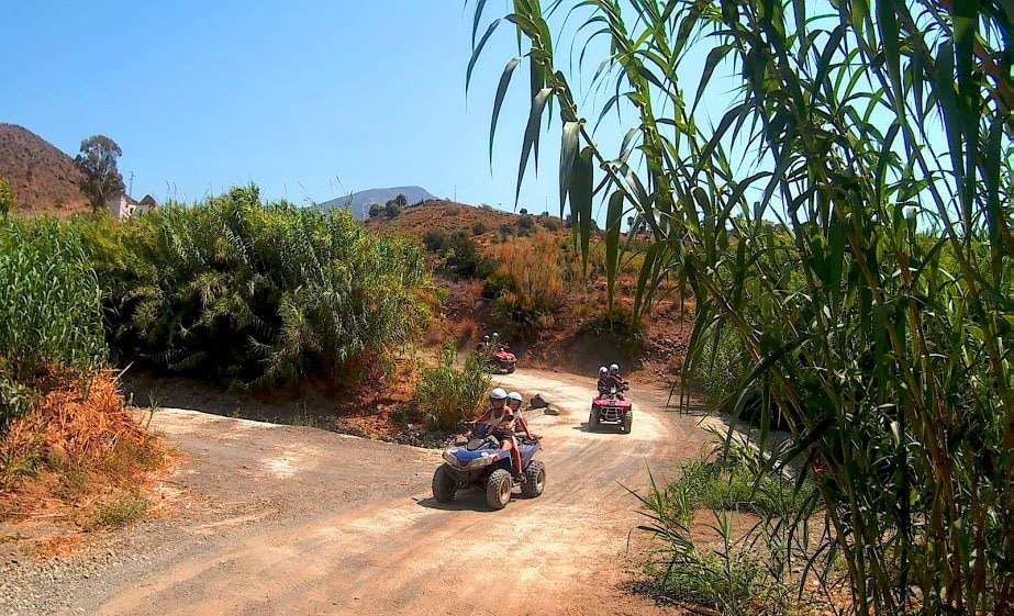three quads riding on a twining road with lots of greenery