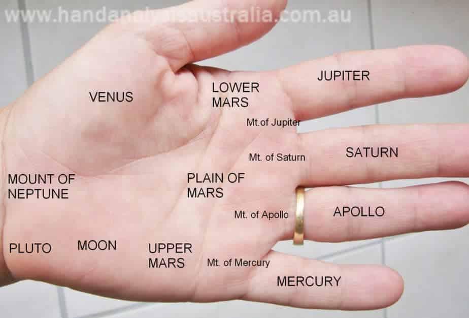 learn palmistry, sari puhakka, destiny palmistry, hand analysis australia, short life line, venus mount, jupiter mount, mount of moon, palmistry