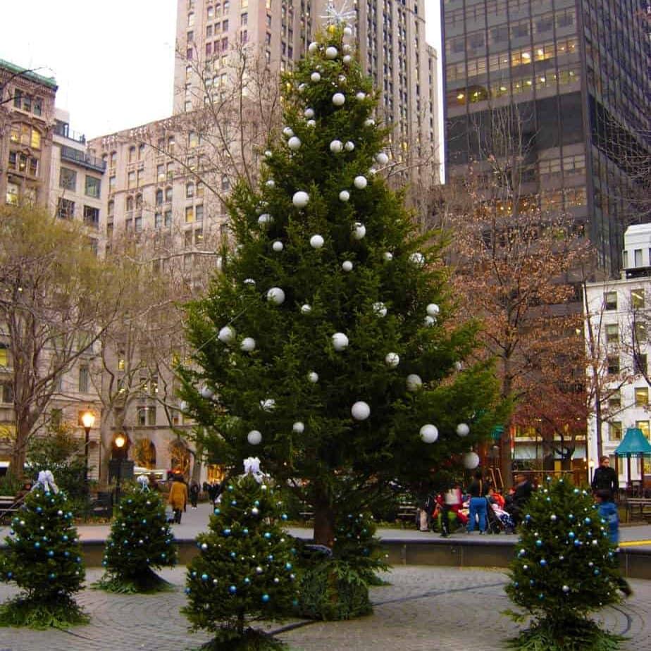 Madison-Squre-Park-Tree-e1543432749400