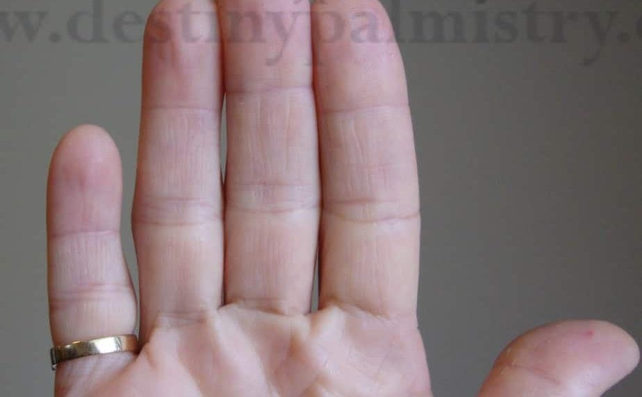 finger length,