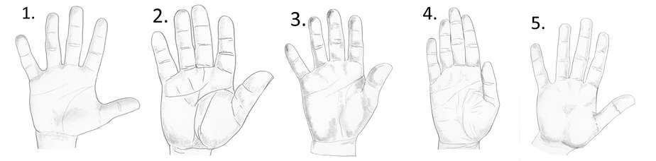 water hand shape, palmistry hand meanings, earth hand shape