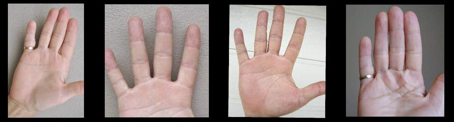 palm reading question, teaching ability, free palmistry, signs of success