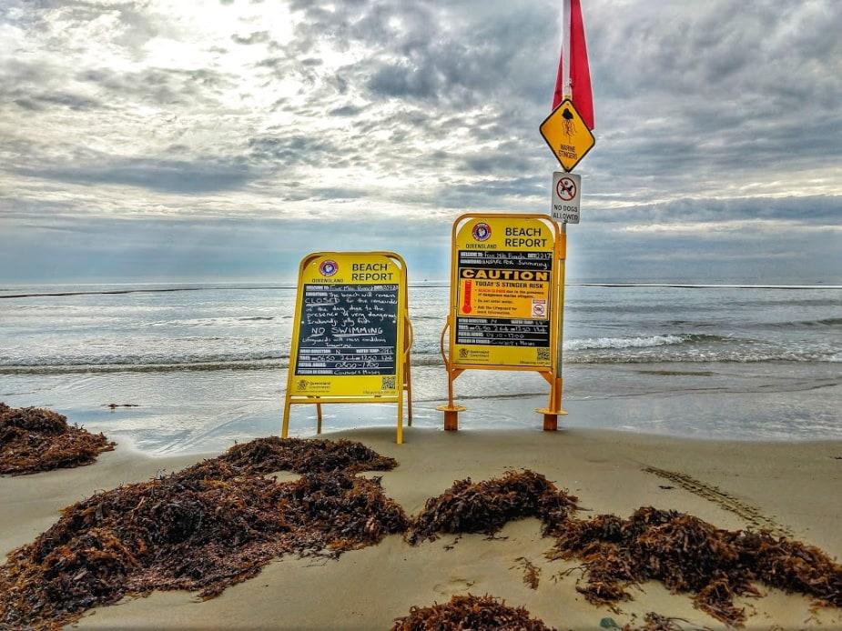 Beach Closed sign Australia Stinger Net Beach Closed Port Douglas Dangerous to Swim