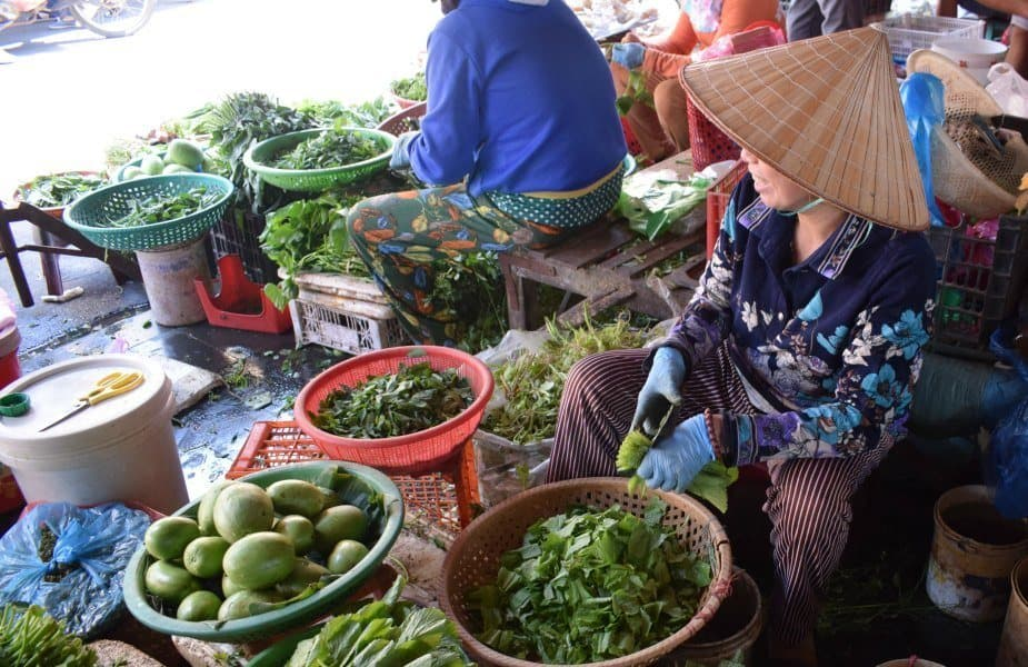 Buying fruit and vegetables hoi an central market