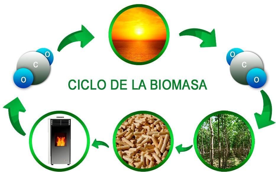 Estufas de biomasa energia renovable
