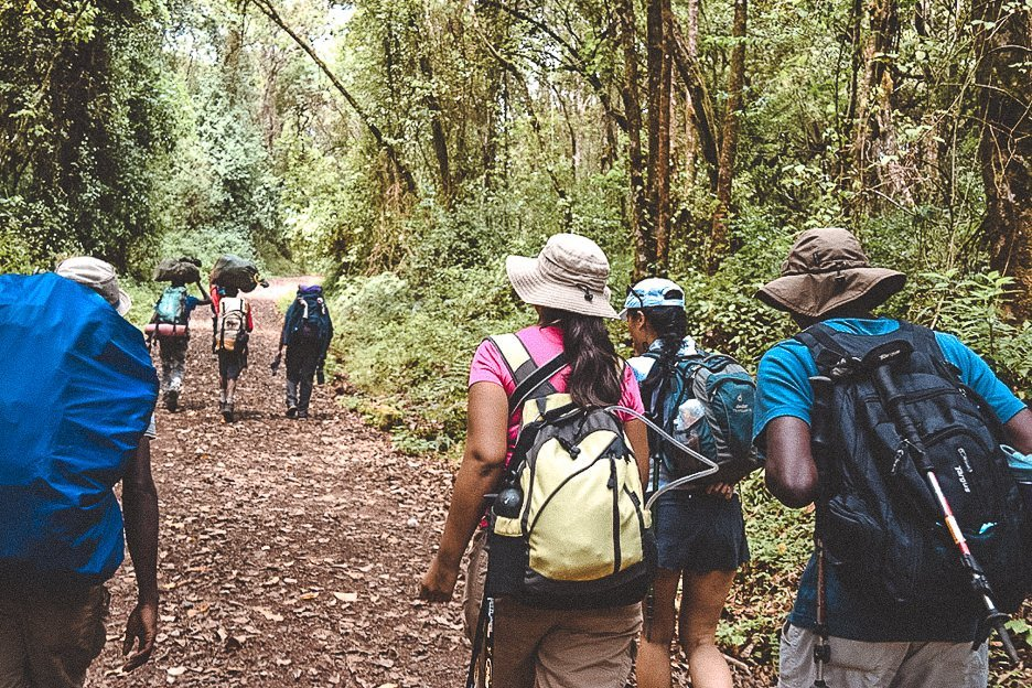 Porters and hikers walk through the rainforest of day 1 on the Machame Route