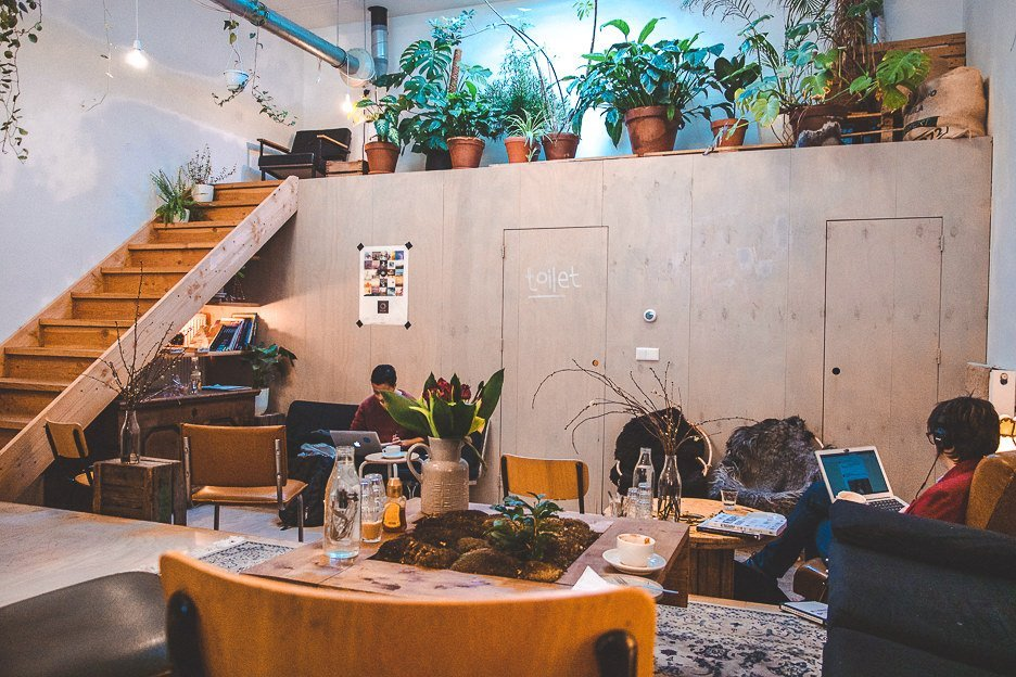 The back room in White Label Coffee with couches and potted green plants