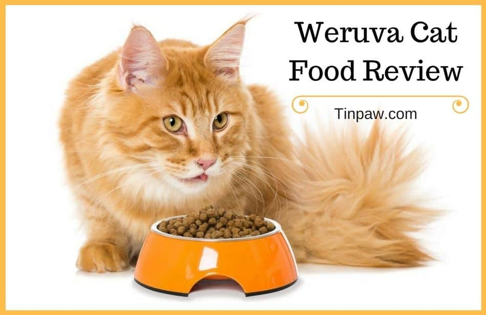 Weruva Cat Food Review