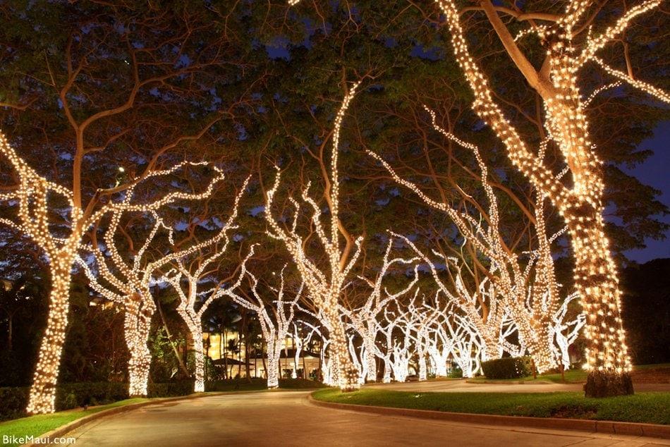 Grand Wailea lights