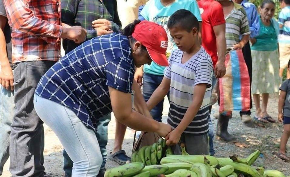 Reparto de bananas el Izabal