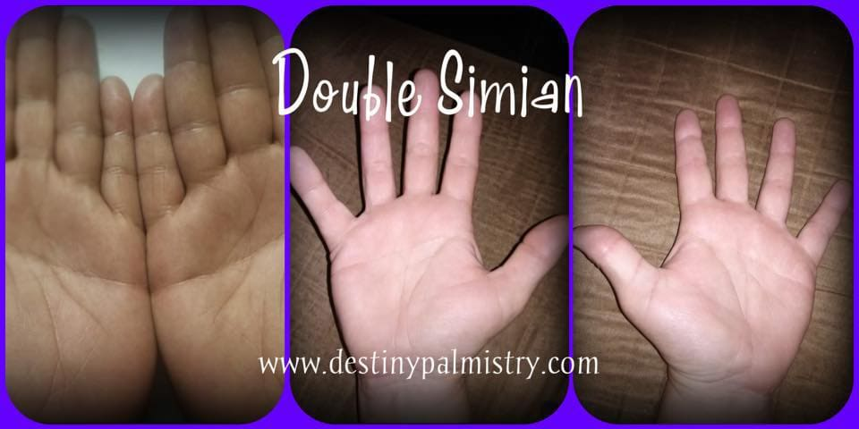 double simian photo
