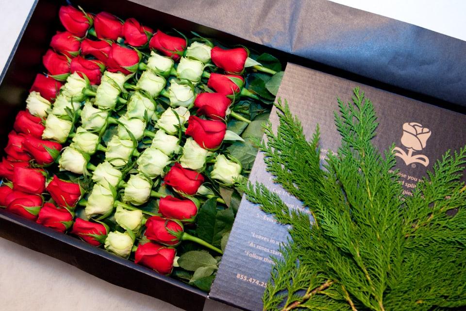 Roseshire Joyous Arrangement