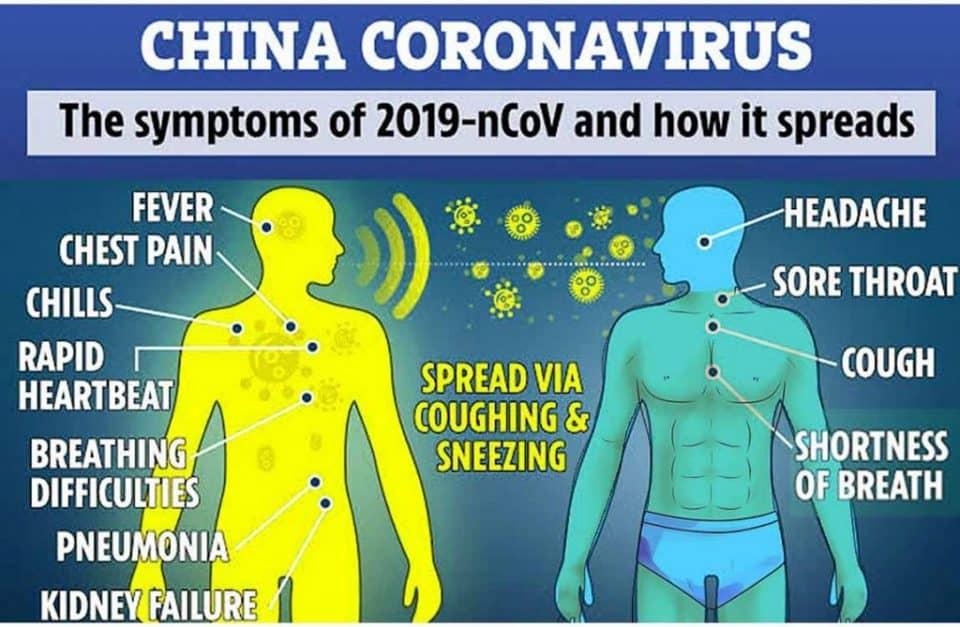 Novel Coronavirus (2019-nCoV)