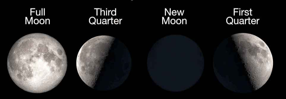 phases of the moon infographic