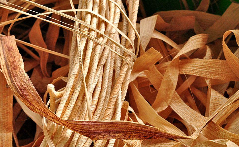 Cuerda de manguey