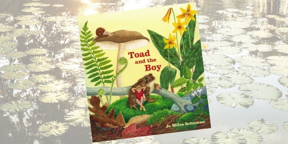 Book: Toad and the Boy