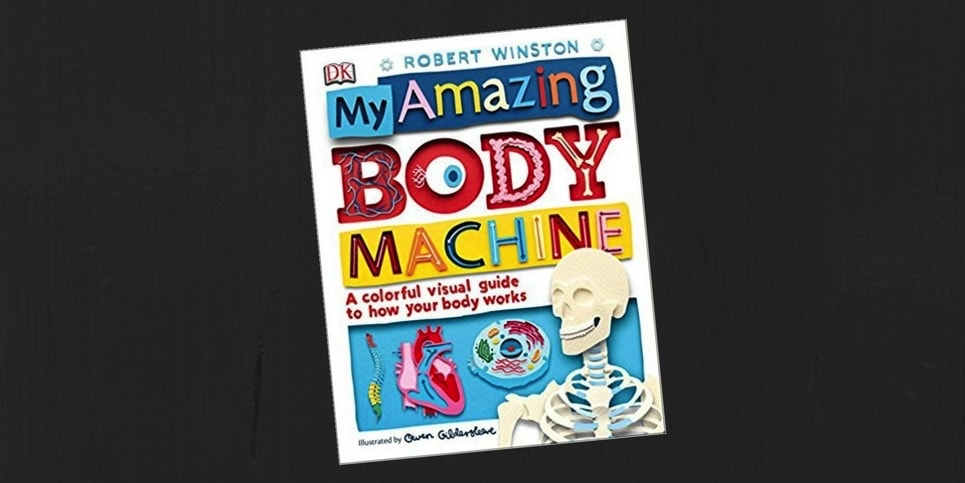 My Amazing Body Machine A Colorful Visual Guide to How Your Body Works Book Review