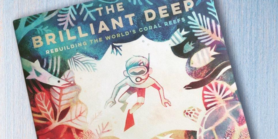 Book The Brilliant Deep