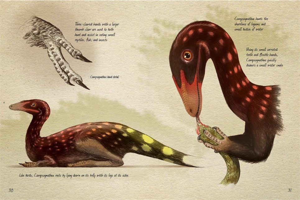 ancient-eath-journal-the-late-jurassic