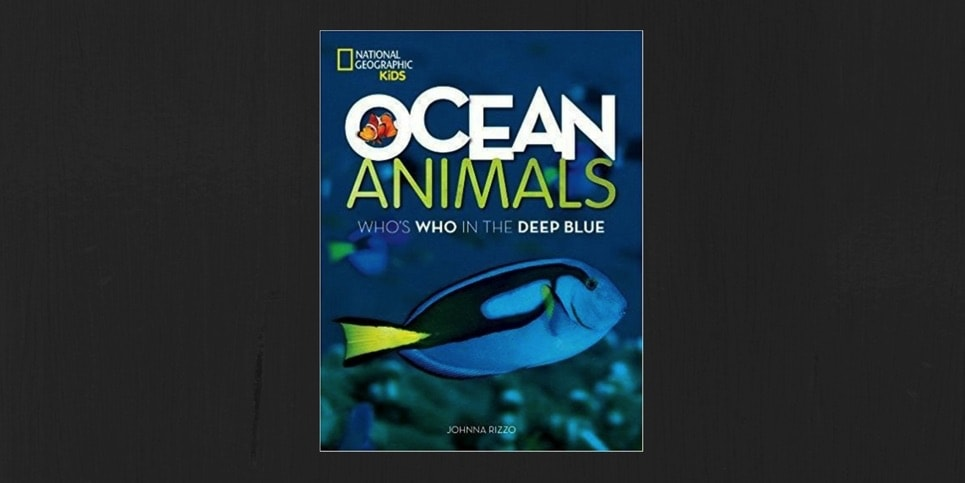 Ocean Animals Whos Who in the Deep Blue by Johnna Rizzo Book Review