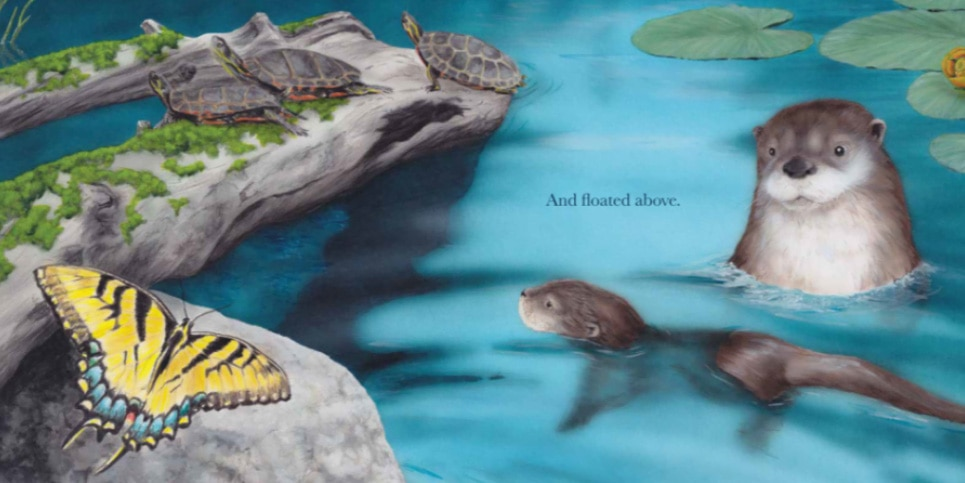 Little-Otter-Learns-to-Swim-by-Artie-Knapp-Book-Review