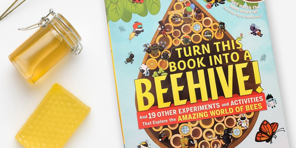 Turn-This-Book-into-a-Beehive-Book-Review