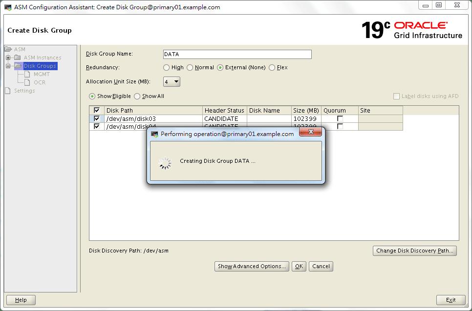 Oracle 19c ASMCA - Create a Disk Group - 04