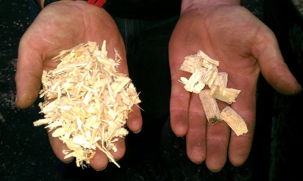 wood chips after wood chipper and after wood re-shredder demonstrated in two hands