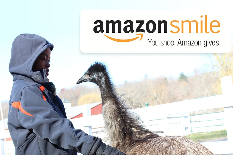 Amazon Smile gives back to Green Chimeys